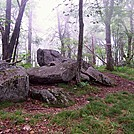 Summit of Bluff Mountain by ollieboy in Trail & Blazes in North Carolina & Tennessee