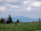 Grandfather Mountain from Grassy Ridge by ollieboy in Views in North Carolina & Tennessee