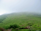 White Top Mountain