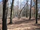 Campsite at Gooch Gap