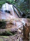 """""""Dragon"""" Falls by Rift Zone in Other Trails"""