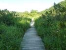 Holston River Boardwalk Va