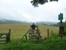 Mama Bear at VA 610 by Rain Man in Views in Virginia & West Virginia