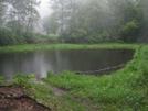 Punchbowl Pond, Va by Rain Man in Trail & Blazes in Virginia & West Virginia