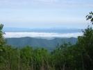 View From Tar Jacket Ridge, Va
