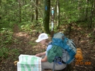 Backbone Rock Junction by Rain Man in Trail & Blazes in North Carolina & Tennessee