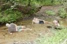 Chillin' in Justus Creek, GA by Rain Man in Trail & Blazes in Georgia