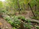 Matts Creek Shelter, Va by Rain Man in Virginia & West Virginia Shelters