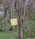 Mtn Moma SOBO sign, GSMNP by Rain Man in Trail & Blazes in North Carolina & Tennessee