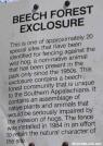 Wild Boar notice, GSMNP