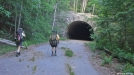 Road to Nowhere Tunnel 1 of 3 by Hikerhead in Benton MacKaye Trail