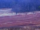 SNP Whiteblaze overnighter 3-24-07