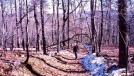 Blue Blazing around Tinker Cliffs by Hikerhead in Trail & Blazes in Virginia & West Virginia