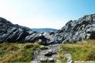 Mt Rogers by Hikerhead in Views in Virginia & West Virginia