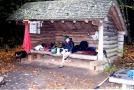 HH at the Old Orchard Shelter by Hikerhead in Virginia & West Virginia Shelters