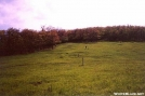 Allegheny Trail-Va/WVa border-Peters Mtn