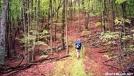 Allegheny Trail-Peters Mtn-Va/WVa border