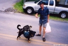 Mouse on cat on dog-Traildays 2004 by Hikerhead in Virginia & West Virginia Trail Towns
