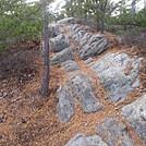 downdragonstooth by Loretta in Views in Virginia & West Virginia