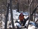Va522 To Bears Den, Doggiebag/aldo by wrongway_08 in Trail & Blazes in Virginia & West Virginia