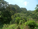 St. Lucia Hike by Jaybird62 in Other Trails