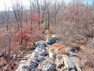Trail in NJ by Jaybird62 in Trail & Blazes in New Jersey & New York