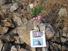 Memorial Hike For Meredith Emmerson by Jaybird62 in In Memory of: