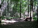 Hertline Campsite by Strategic in Maryland & Pennsylvania Shelters