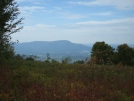 Bennington View