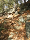 Descend steeply by sasquatch2014 in Trail & Blazes in New Jersey & New York