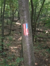 Flag Blaze stormville Mt 1 by sasquatch2014 in Trail & Blazes in New Jersey & New York