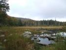 Roaring Branch 2 by sasquatch2014 in Views in Vermont