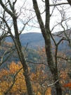 Silver hill View fall by sasquatch2014 in Views in Connecticut