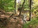 Sunk mine RR trail 2 by sasquatch2014 in Trail & Blazes in New Jersey & New York