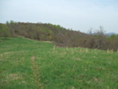 Mini Bald North View by sasquatch2014 in Trail & Blazes in Virginia & West Virginia
