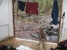 Aldo Waiting Out The Rain by sasquatch2014 in Trail & Blazes in Virginia & West Virginia