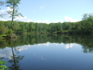 Beaver Pond by sasquatch2014 in Views in Massachusetts