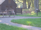 Just Passing Thru by sasquatch2014 in Views in Virginia & West Virginia