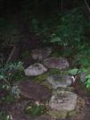Trail Work - Corbin Hill Ny