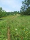 Vt Southbound Summer Hike 09 by sasquatch2014 in Trail & Blazes in Vermont