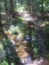 Vermont Hike Summer 09