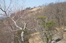 Bear Mt Trail Volunteer Orientation