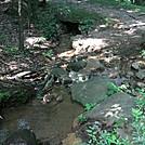 Hemlock Springs, 2011 June by GoldenBear in Trail & Blazes in New Jersey & New York
