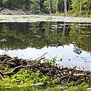 Beaver Pond in Delaware Water Gap Nat RA by GoldenBear in Views in New Jersey & New York