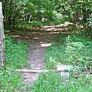 Blue-Blazed Trail to Shenandoah Campground