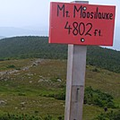 Sign at Peak of Mount Moosilauke by GoldenBear in Views in New Hampshire