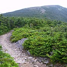 First view of peak of Mount Moosilauke