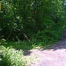 Walking south through North Adams