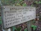 Appalachian Trail Trip  2   Fontana Lake At End  019 by Roots in Section Hikers