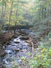 Porter's Creek by HikerRanky in Trail & Blazes in North Carolina & Tennessee